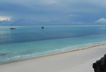 Zanzibar 7
