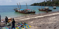 Zanzibar 25